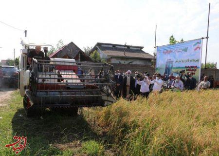 اولین برداشت مکانیزه برنج در استان گیلان انجام شد